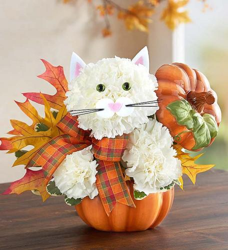 Fabulous Feline for Fall
