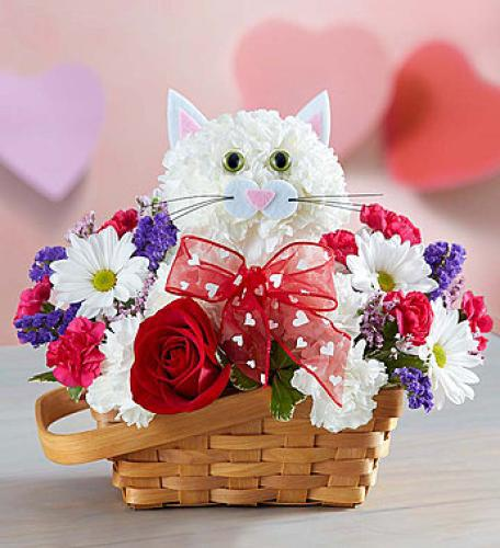 Flirty Feline | Flower Arrangement