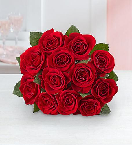 Red Roses in Bouquet! [Trending]