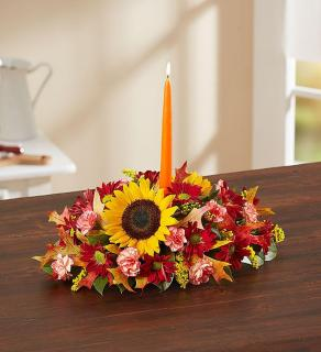 Fields of Europe™ for Fall Centerpiece